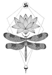 Zen Collection - Dragonfly 2